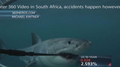 Shark devours GoPro