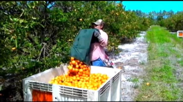 Migrant Workers Struggle for Change