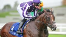 Talking Horses: BHA offer fast-track dope tests for Newmarket runners