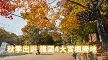 【韓國紅葉】秋季出遊!韓國4大賞楓勝地