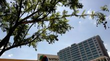 Indian IT firm Wipro touts U.S. jobs amid visa uncertainty