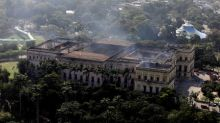 Skull of ancient human found in burned Brazilian museum