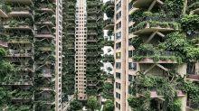 Großstadt-Dschungel: Hochhäuser als vertikale Gärten