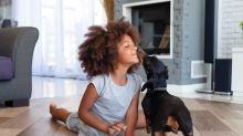 Convívio com cães pode fazer criança ser mais sociável