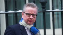 Michael Gove says Cabinet Brexit discussions are sustained by 'glasses of fine Scotch whisky and smoked salmon'