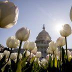 What's next from Congress in coronavirus stimulus legislation?