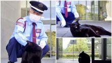 【新片速報】日本「尾道市立美術館」重開     兩個月後與黑貓重聚