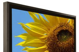 Klegg Electronics goes big with its 40-inch, MCE-infused LCD TV