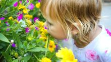 How children sniff aromas could provide autism test