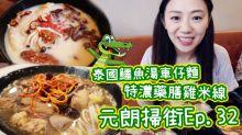 【特濃藥膳雞米線VS泰國鱷魚湯車仔麵-元朗掃街】