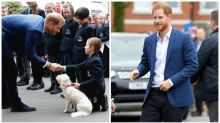 Little boy doesn't believe he met 'the real Prince Harry'