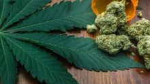 Wow! This Pot Stock's Licensed Growing Space Has Tripled in 4 Months