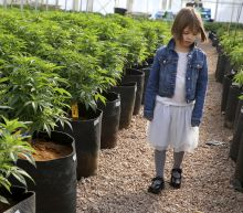 Girl who inspired Charlotte's Web marijuana oil dies
