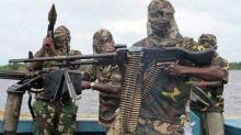 Boko Haram Executes Second Female International Red Cross Worker in Nigeria