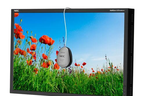NEC rolls out two new high-end 24-inch MultiSync monitors
