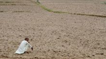 Despite heightened farm unrest and rise in demand for rural jobs, govt has curtailed funding for MGNREGS