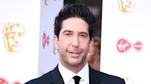 Friends ended well so why mess with it? David Schwimmer dismisses revival rumour