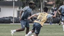 Santos inicia 'semana cheia' com Marinho passando por exames e Raniel treinando com o time B