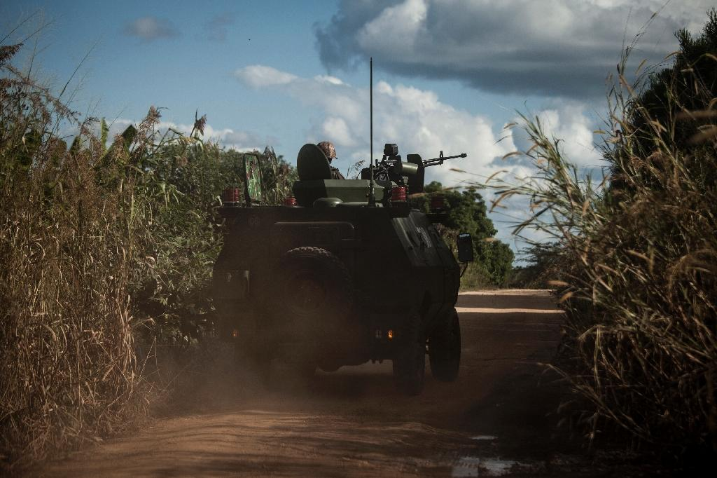 Since 2013, tensions have flared between the Frelimo government and Renamo fighters who have again taken up arms in a battle they say is against the Frelimo elite (AFP Photo/John Wessels)