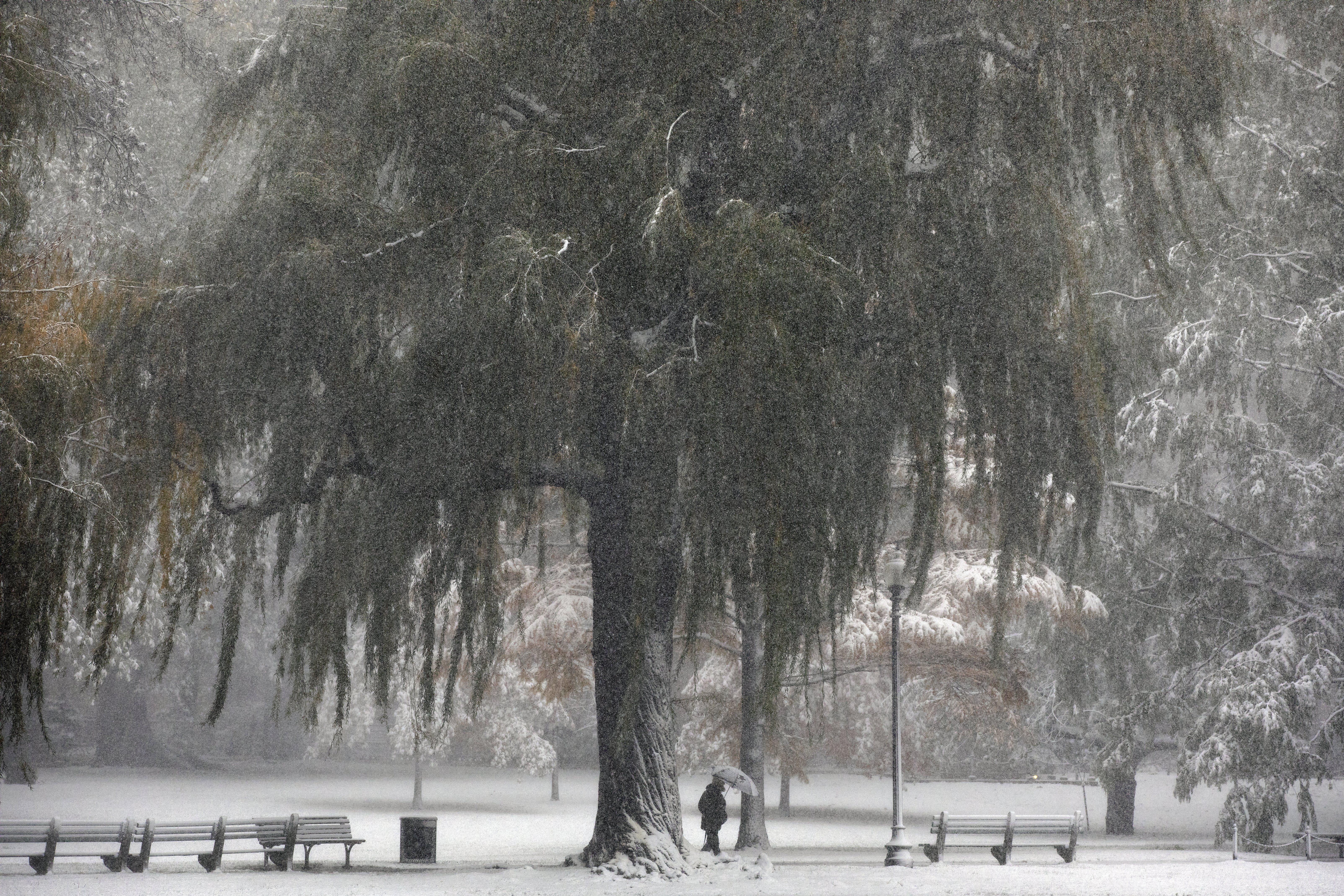 Snow falls on the Public Garden, Friday, Oct. 30, 2020, in Boston. (AP Photo/Michael Dwyer)
