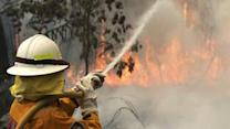 Raw: Firefighters Battle Wildfires in Australia