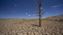 """L'ONU s'attend à beaucoup de phénomènes météo """"extrêmes"""" en 2020"""