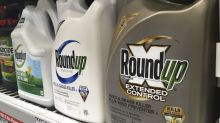 Jury: Roundup weed killer major factor in man's cancer
