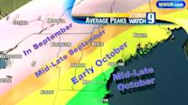 New Hampshire Fall Foliage Report: Sept. 6