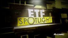 ETF Spotlight: Rare earth opportunities
