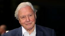 Pandemic shows need for global response to climate change, says Attenborough