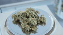 Why Illinois Legalized Marijuana