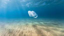 Abtauchen in Plastik - Fotoprojekt macht Müllproblem deutlich