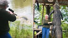 Grandma kills huge alligator after it 'ate her miniature horse'