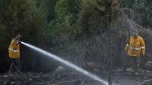 Incendies en Israël: plus de 250 foyers recensés en moins de 24 heures