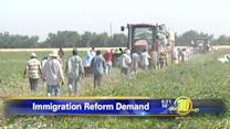 Farmers join the fight for immigration reform