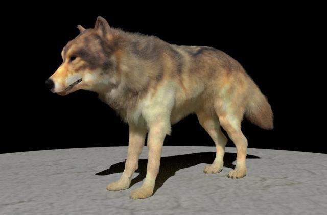 AI is making more realistic CG animal fur