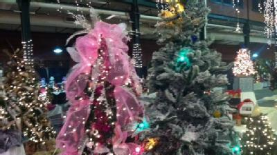 Catch Holiday Spirit At Festival Of Trees And Lights