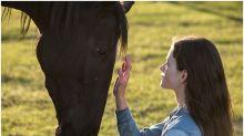 Kate Winslet's 'Black Beauty' Adaptation Set For Disney Plus Bow