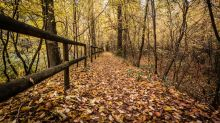 Piazza Affari: l'autunno richiederà cautela. Le blue chips hot