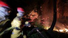 Des mega-feux comme en Australie sont-ils possibles en France ?