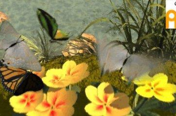 Biggest thing to hit XBLA: butterflies?