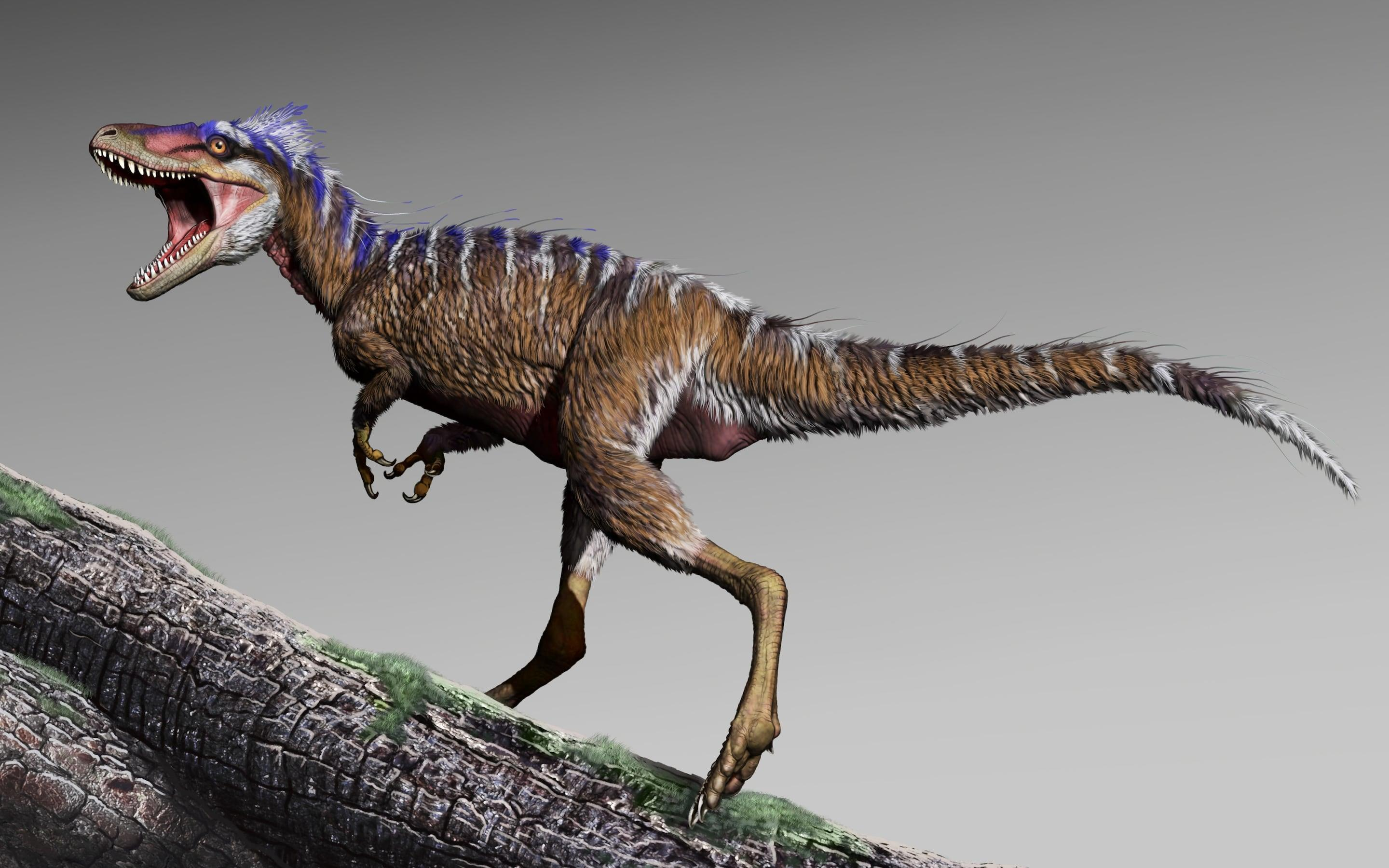 Tiny T-rex ancestor discovered in Utah
