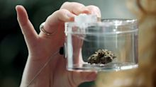 Pot sales at this Canadian retailer dropped as legal spending rises