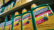 U.S. judge allows lawsuits over Monsanto's Roundup to proceed to trial