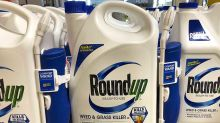 Bayer Stock Tumbles After Jury Finds Weed-Killer Roundup Caused Cancer