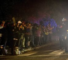 Portland protesters cause mayhem again, police officer hurt