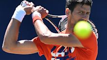 Top seeds Djokovic, Kerber hoping for pre-Wimbledon form at Eastbourne