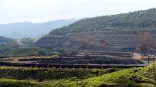 Vale tem produção factível com meta e vê preço do minério insustentável, diz Credit