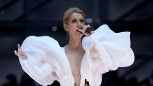 The internet thinks Celine Dion's Billboard Music Awards dress looks like the iceberg that sunk the Titanic
