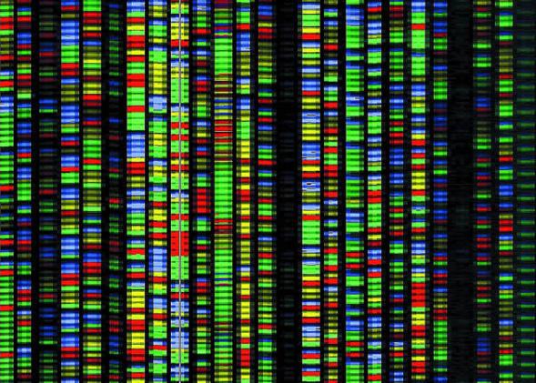 Human gene sequencing gets an official yardstick
